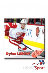 Магнит DETROIT RED WINGS Dylan Larkin